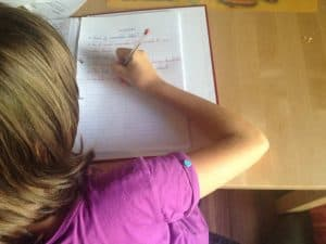 Nederlandse huiswerkbegeleiding via Skype
